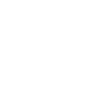 DAGJE_DEN_BOSCH_w
